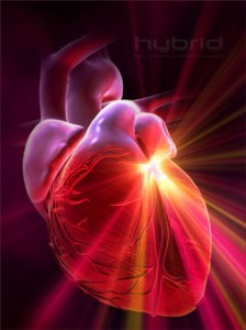 A serious note about heart attacks, health and fitness gym, exercise health and fitness, sports health and fitness, family health and fitness, sport health and fitness, google health, health line, partners health, community health systems, health care for all, definition of health, my fitness, fitness website, best fitness, 24 7 fitness, pregnancy trimester, pregnancy doctor, second trimester pregnancy, pregnancy delivery, pregnancy news, trimesters of pregnancy, 1st trimester pregnancy, for pregnant women