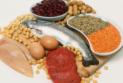 High Protein Foods For Malnutrition