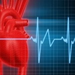 Heart Disease Risk is Not Lowered through Weight Loss