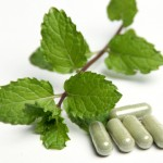 Herbal Supplements to Lose Weight