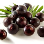 Does Acai Berry Really Work for Weight Loss?